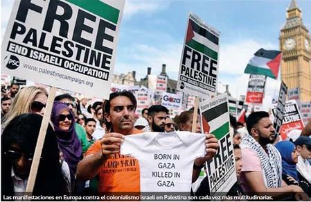 bandera-palestina-walterromero-03